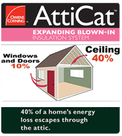 OC Attic Cat Insulation